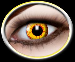 Motiv Kontaktlinsen 12Monate