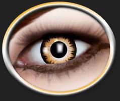 Tone Kontaktlinsen