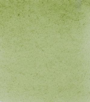 Schmincke HORADAM Aquarellfarben 1/2 Napf / 516 Grüne Erde