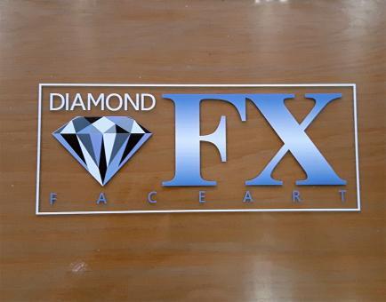 Transparente Trennscheibe für DFX Kunststoffkoffer